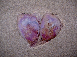 Heart Invader. Cantabria, Spain