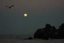 Full moon risesGalápagos