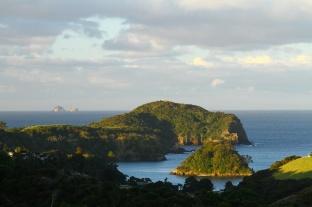 Afternoon sun.North Island, New Zealand